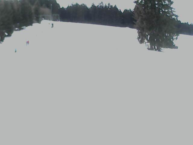 Webcam Skigebied St. Georgen - Oberkirnach Zwarte Woud